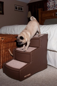 4 Good Reasons to Invest in Stairs for Dogs to get on a Bed