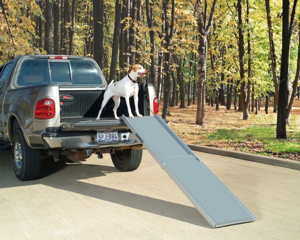PetSafe Solvit Deluxe Telescoping Pet Ramp