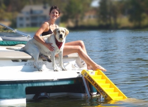 How'd You Get That Dog Aboard? A Dog Boat Ladder, of Course!