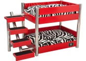 LazyBonezz Metropolitan Pet Bunk-Bed Review