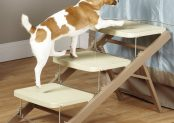 Pet Studio 3 Step Metro Ramp/Steps Review